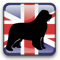 UK Newfoundlands Info logo